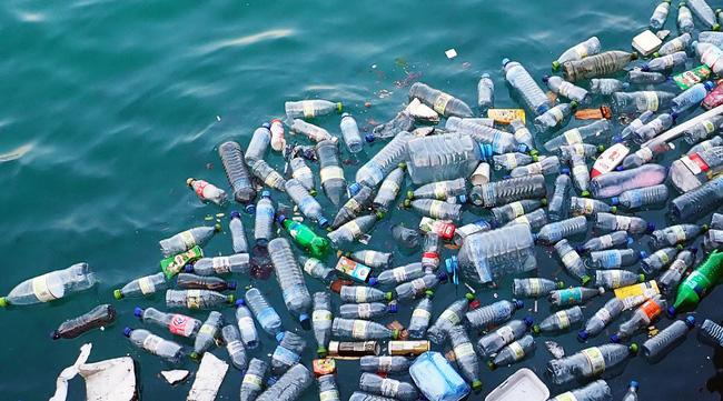 máy ép nhựa phế liệu
